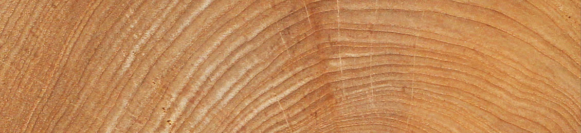 Teak from sustainable forests in Indonesia